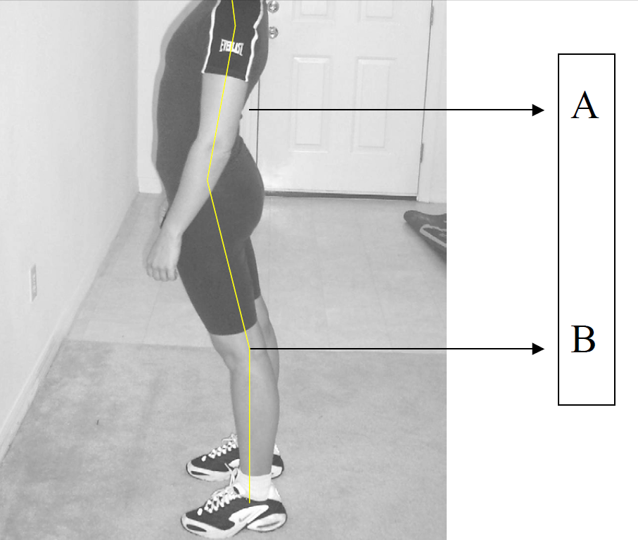 Posture Advice For Those With Back Pain